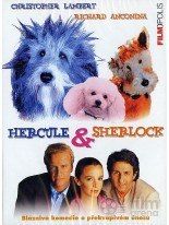 Hercule & Sherlock DVD