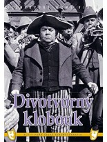 Divotvorný klobouk DVD