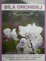 Bíla orchidej a další hity pro českou zábavu DVD